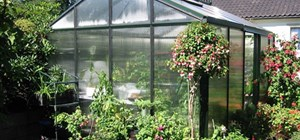 Polycarbonate Sheeting for Greenhouses - 5 Major Benefits